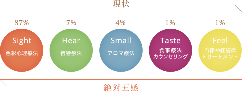 87% Sight 色彩心理療法 7% Hear 音響療法 4% Small アロマ療法 1% Taste 食事療法・カウンセリング 1% Feel 自律神経調律トリートメント